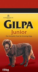 Gilpa JUNIOR